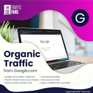 Organic Traffic From Google.com