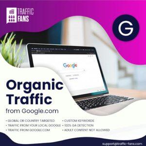 Organic Traffic From Google.com