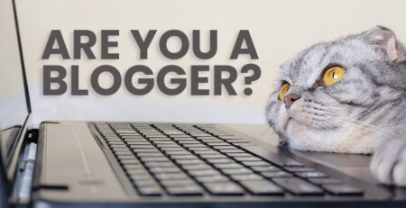 website traffic for bloggers